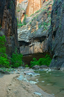 Zion Narrows, Virgin River 9152