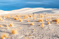 White Sands National Monument, New Mexico 4333