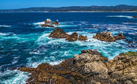 Point Lobos State Natural Reserve 00095