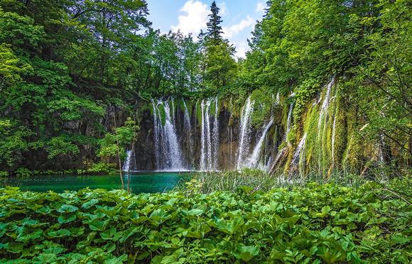 Robert Heil The Real Garden Of Eden Croatia And
