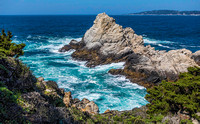 Point Lobos State Natural Reserve 00129